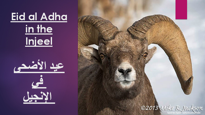 Adha pic for website